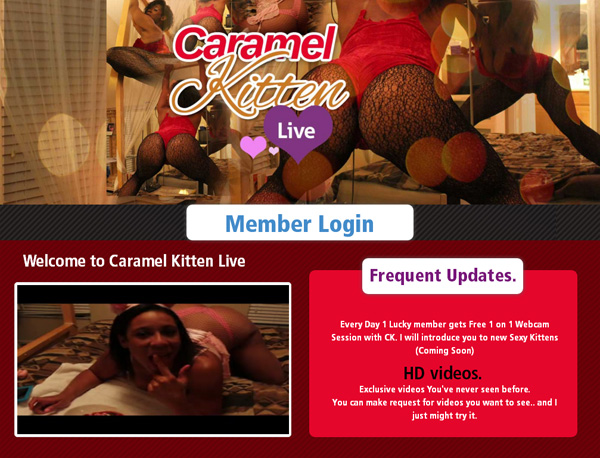 Caramel Kitten Live Check Out
